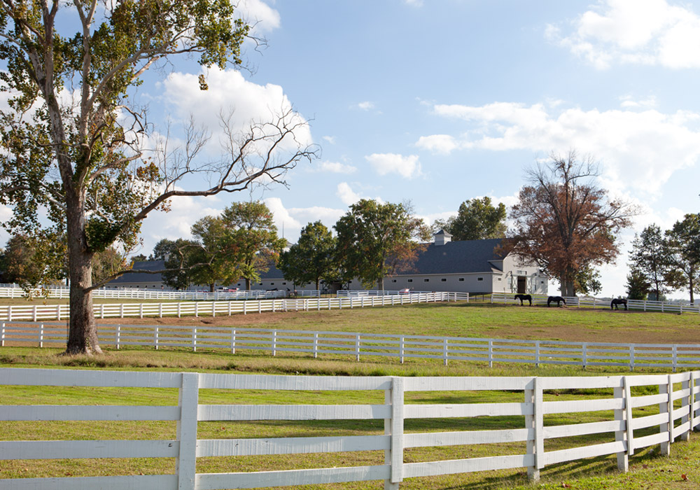 Gainsway Farm, Lexington, Kate Sears