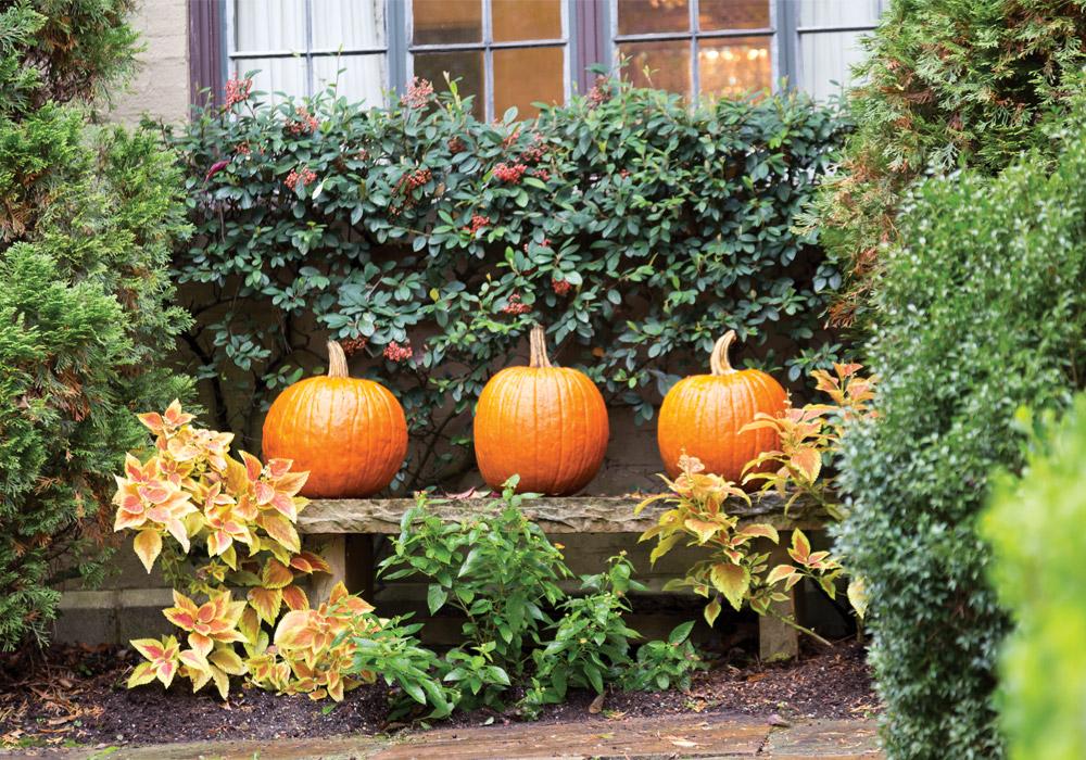 Autumn Interior