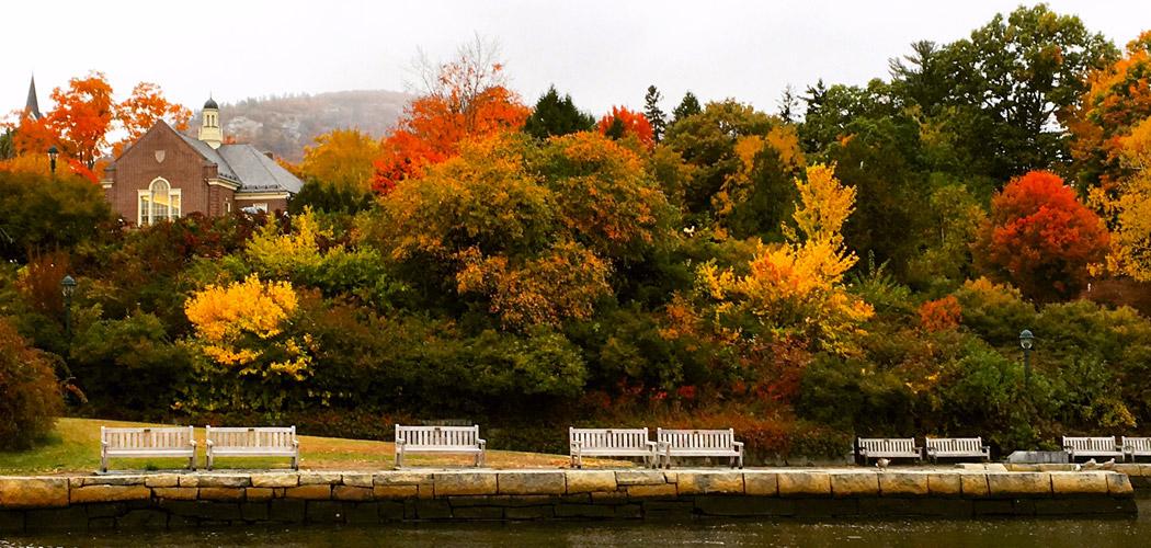 The Beauty of Fall Foliage