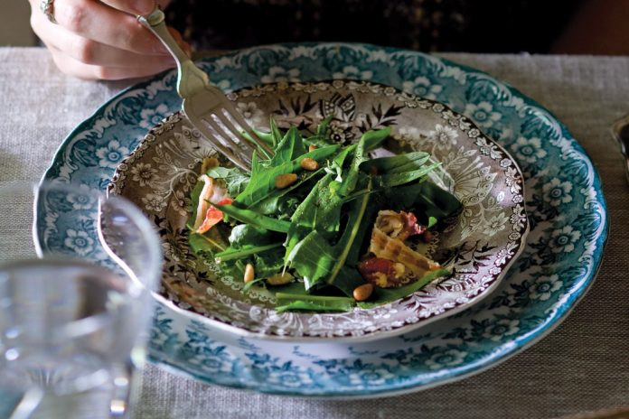 Dandelion-Green-Salad-Recipe