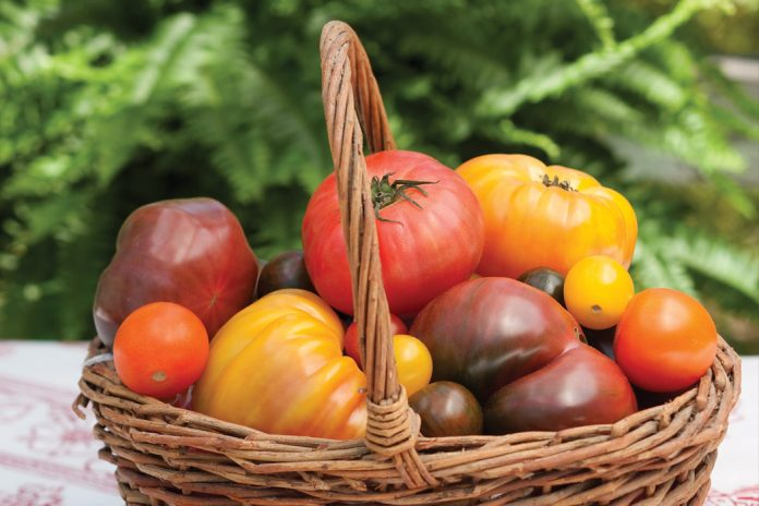 Heirloom Tomatoes Victoria magazine