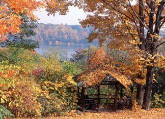 Autumn Victoria magazine