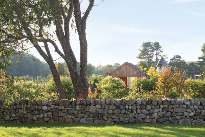 Fields of Dreams: Blackrock Farm
