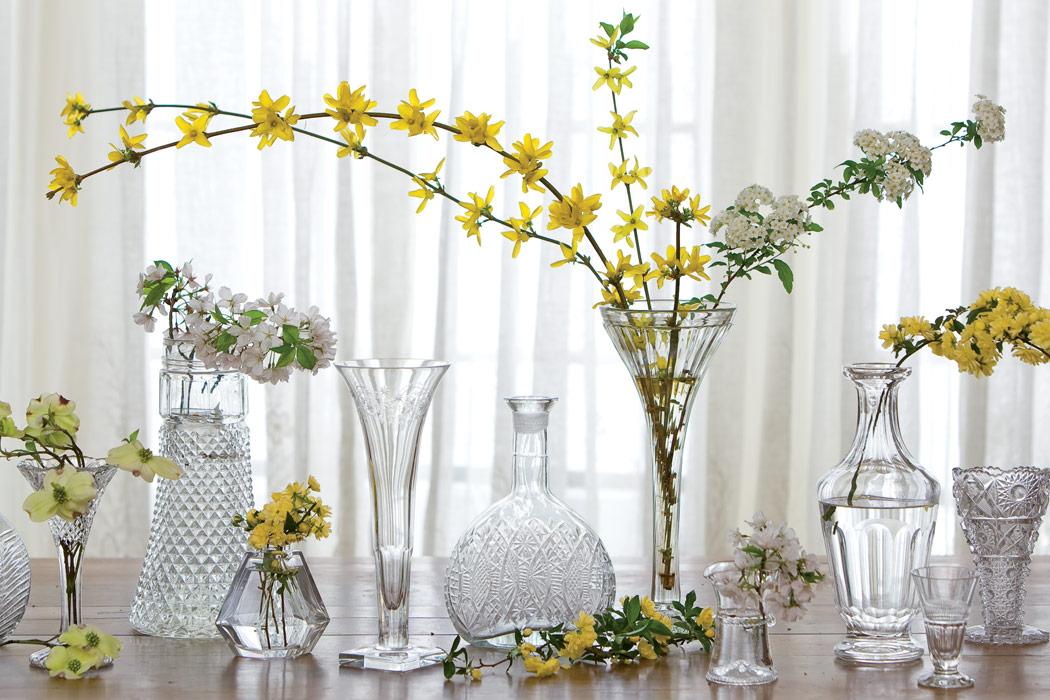 Blooming Bouquets: An Indoor Garden