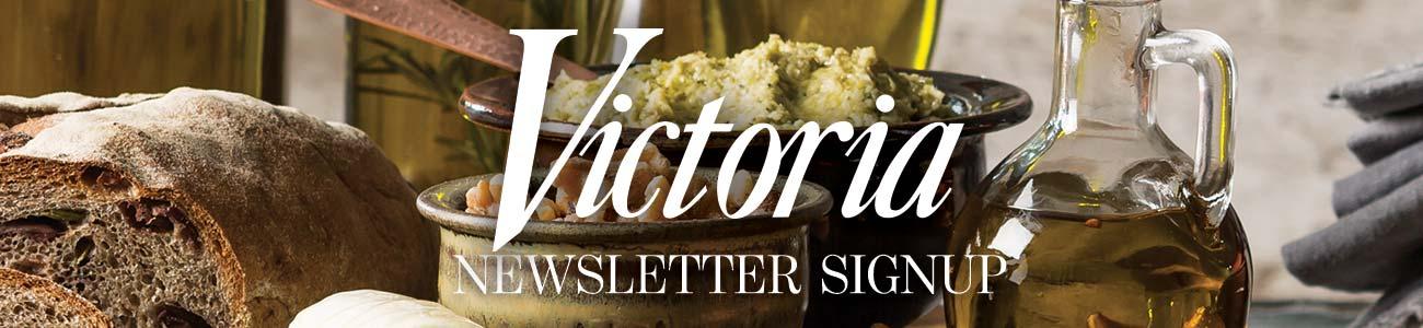vik-newsletter-banner