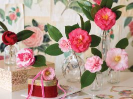 Camellias, How I Love Thee