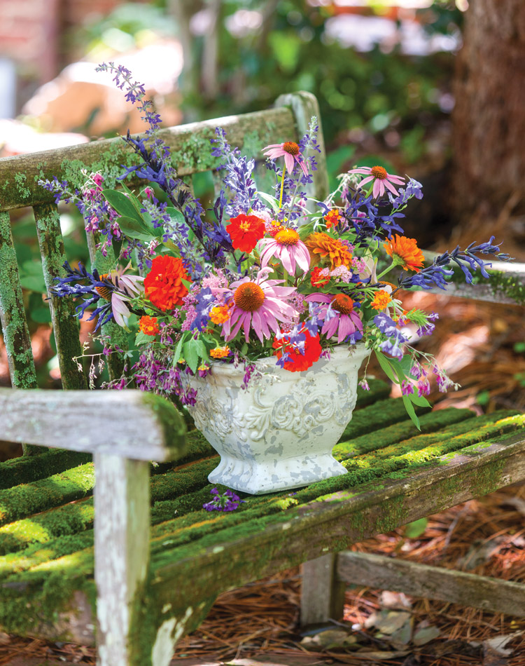 Allure of the Cottage Garden