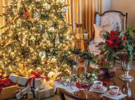 The Holiday Issue: A November/December 2020 Preview